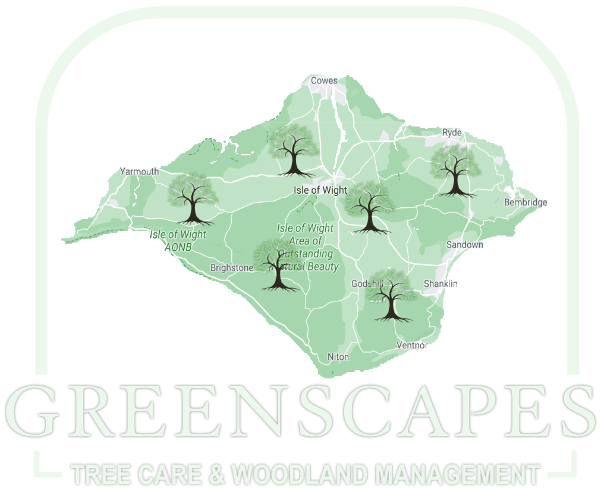 Tree Surgery Removal IOW Land Management Services Isle of Wight